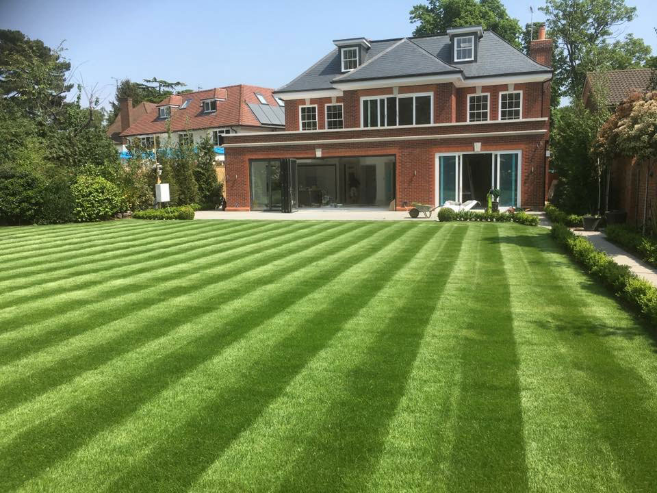 Large Residential lawn
